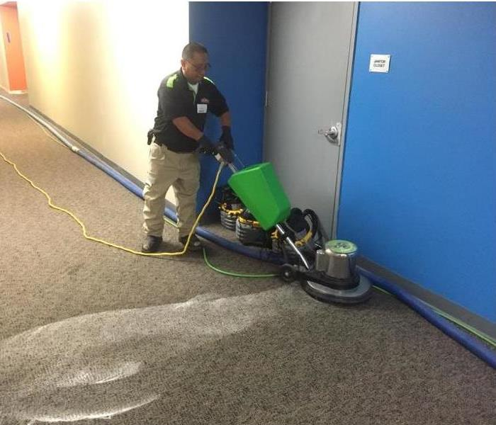 Carpet Cleaning for Businesses After