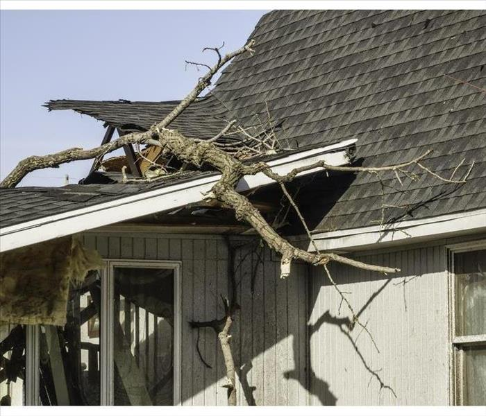 Tree limbs remain on the ripped roof