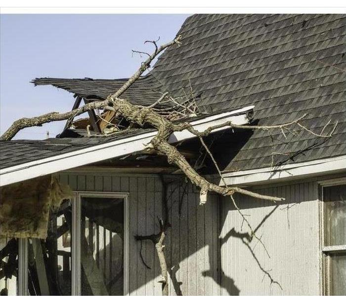 Tree limbs remain on the ripped roof of a house severely damaged by a storm