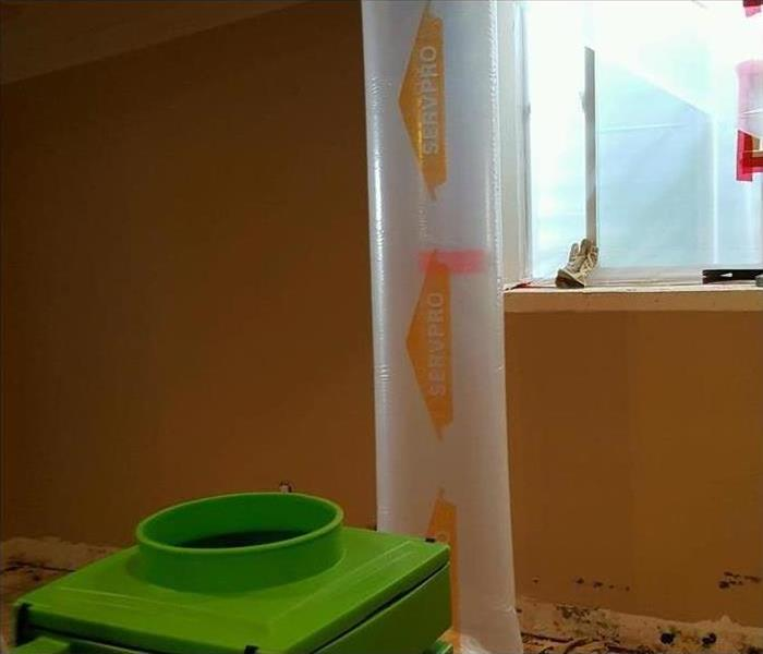 Why SERVPRO Does Mold Grow in Dry Climates?